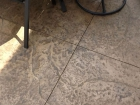 decorative-concrete-install.jpg