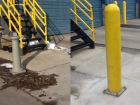 pylon-post-concrete-repair-before-after.jpg